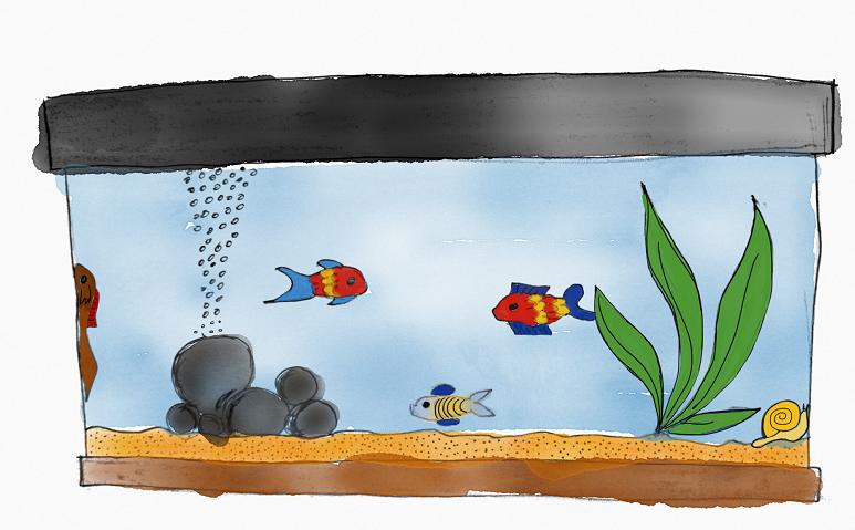 Fische - schön zum Beobachten, aber ohne Kuschelfaktor.