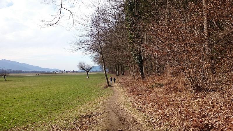 Wandern Waldrand