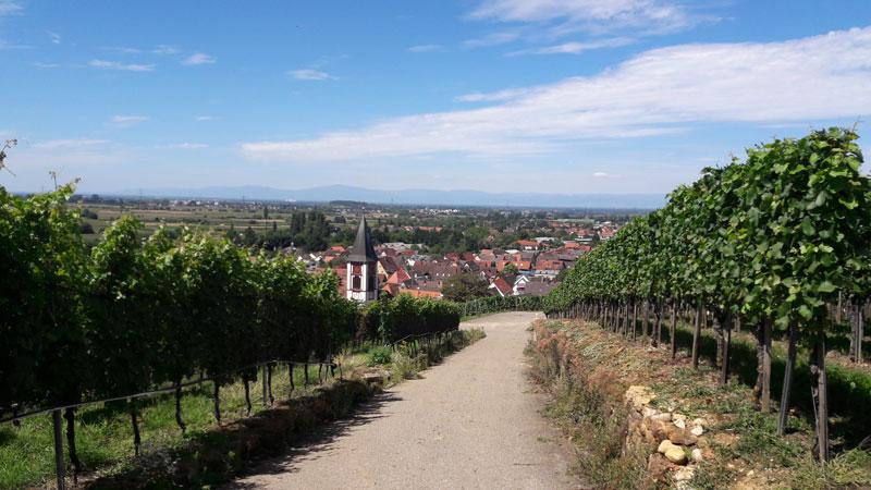 Ehrenkirchen Ölberg